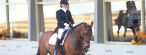 Paard&Miep wedstrijdbegeleiding