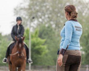 Hippische coaching Paard&Miep
