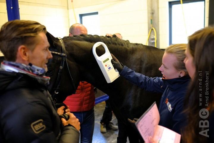 Wil jij bijdragen aan schone en eerlijke paardensport?
