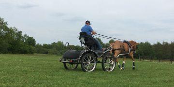Paard voor de wagen spannen