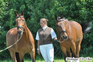 Paard&Miep-hippische coaching