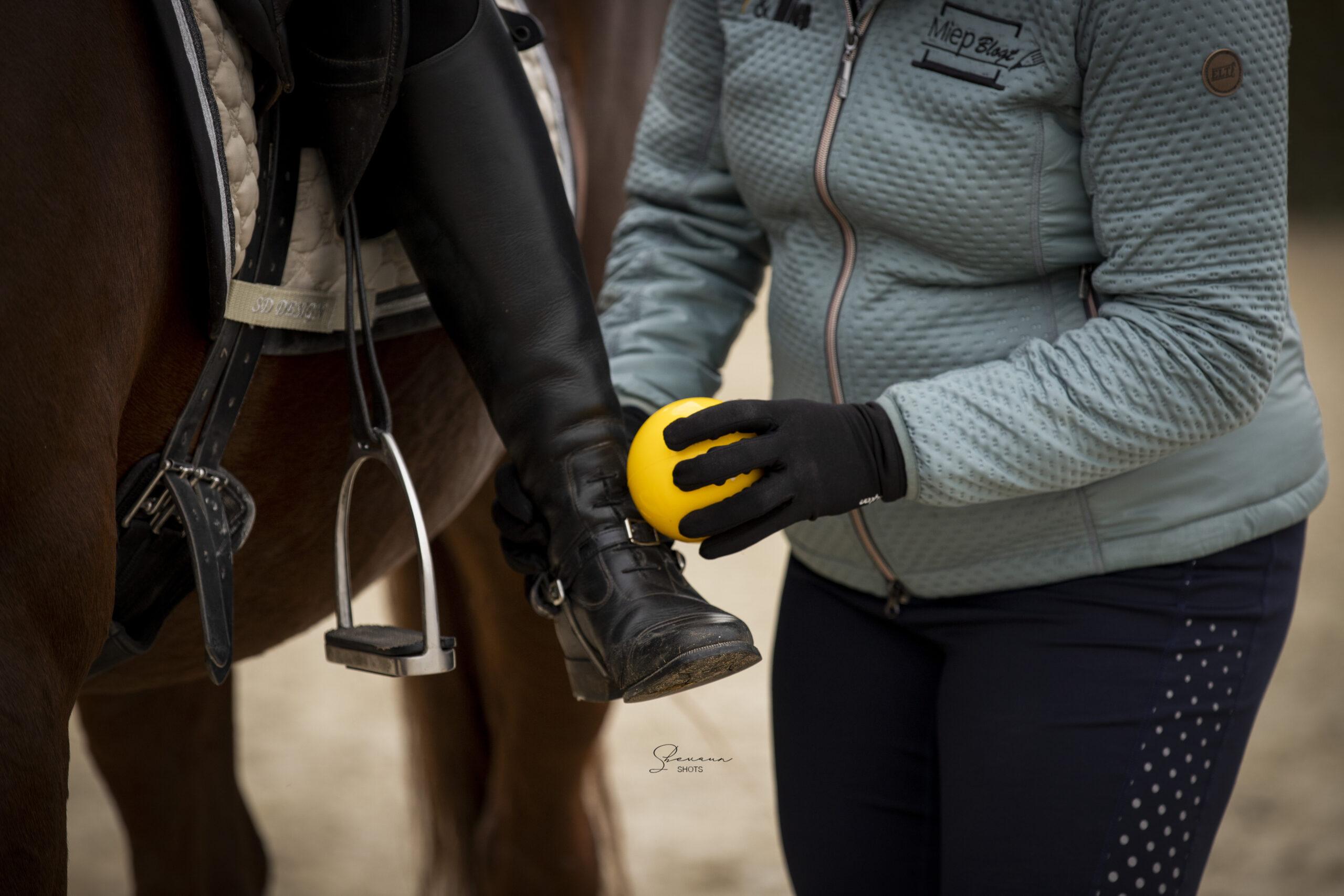 Paard&Miep Franklin Methode